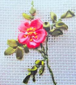 Цветы Шиповника лентами
