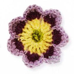 Цветок Примула крючком