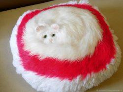 Декоративные наволочки и подушки купить